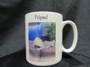 tripod-mug2